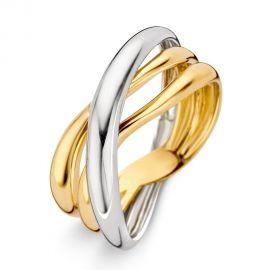 Ring bicolor